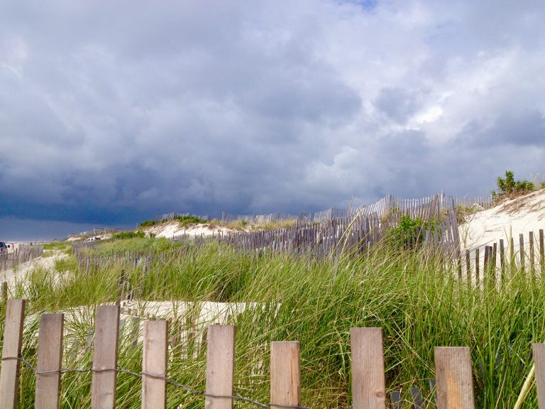 South Seaside Park dunes in August 2014. (Photo: Justin Auciello/JSHN)