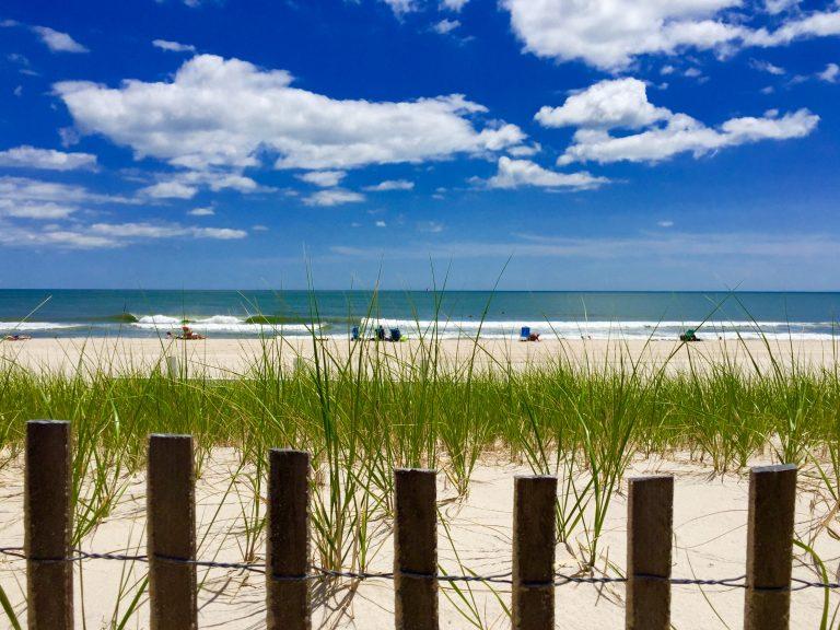 A Seaside Park dune. (Photo: Justin Auciello/for NewsWorks)