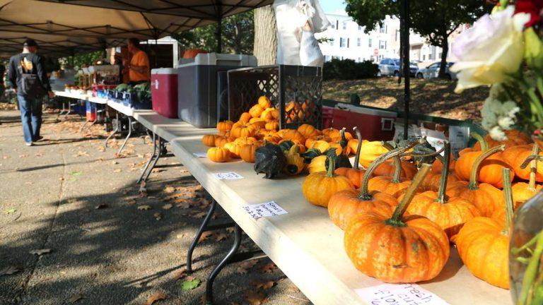 The Pretzel Park Farmers Market offered fresh and seasonal produce. (Natavan Werbock/for NewsWorks)