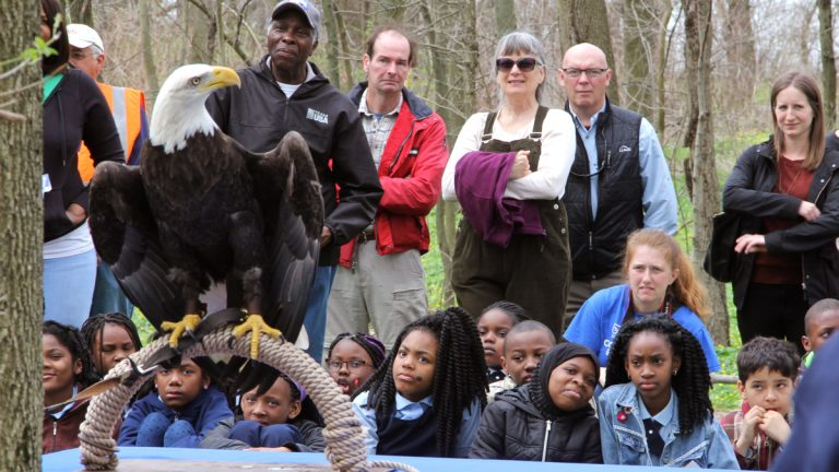 Children visiting the  John Heinz National Wildlife Refuge at Tinicum learn about bald eagles. (Emma Lee/WHYY)