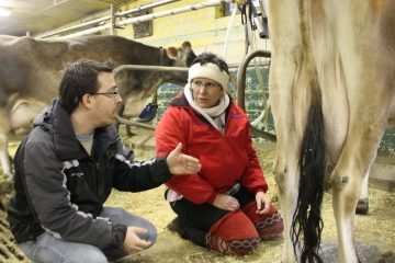 State Rep. Pam DeLissio preparing for the milking contest with help from David Ruvarac, an agricultural science teacher at Saul High School. (Matt Grady/for NewsWorks)