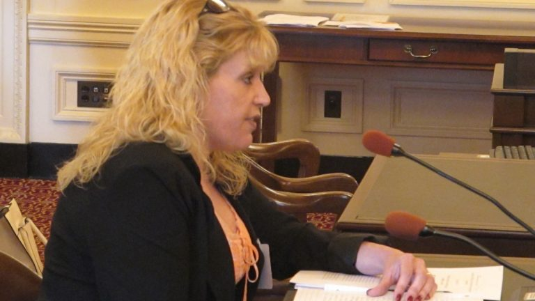 Nancy Wirtz tells New Jersey lawmakers the measure could save her Sandy damaged home in Forked River from foreclosure. (Phil Gregory/WHYY)