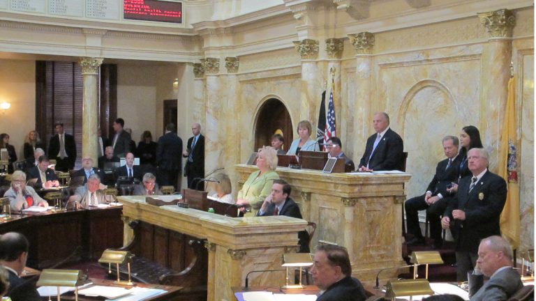 A previous override attempt failed in New Jersey's Senate Sept. 24. (Phil Gregory/WHYY)