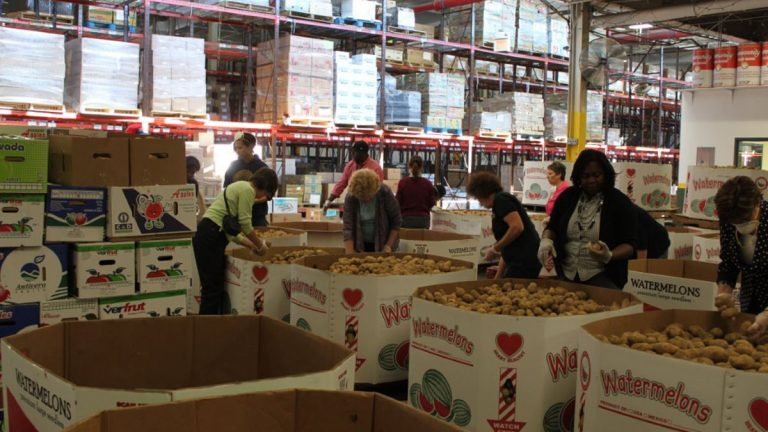 Workers sort food donations. (Community Food Bank of New Jersey)