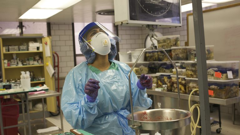 Shraddha Patel, a first year pathology resident, weighs organs during an autopsy. (Irina Zhorov/The Pulse)