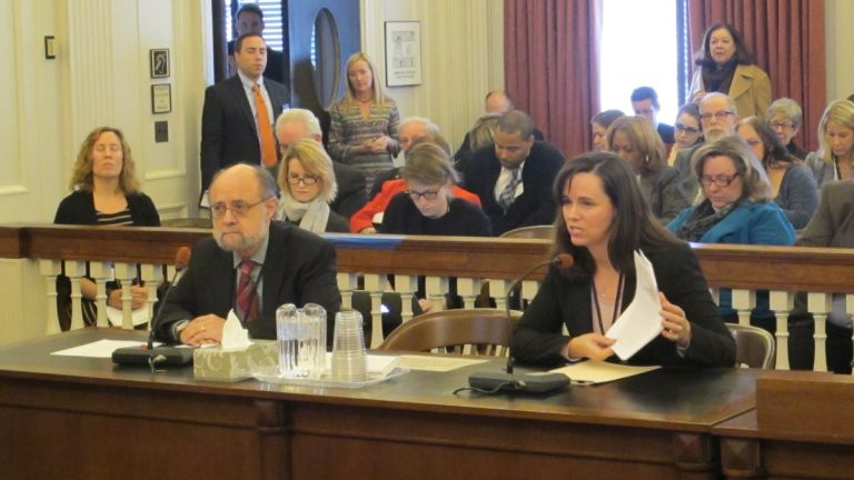 Ray Castro and Serena Rice testify at Assembly Human Services Committee hearing. (Phil Gregory/WHYY)