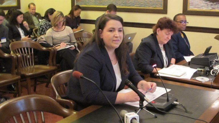 Jackie Cornell-Bechelli, regional director of the U.S Department of Health and Human Services, briefs members of the New Jersey Senate Health Exchange Task Force. (Phil Gregory/WHYY)