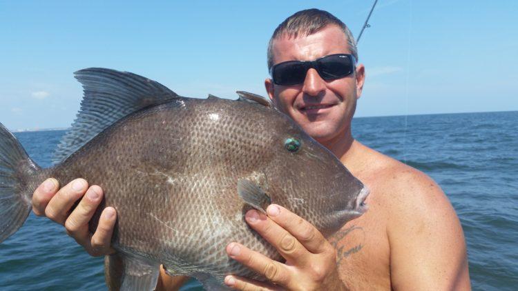 Jimmy Massimino holds his record setting gray triggerfish. (Image courtesy of Jimmy Massimino)