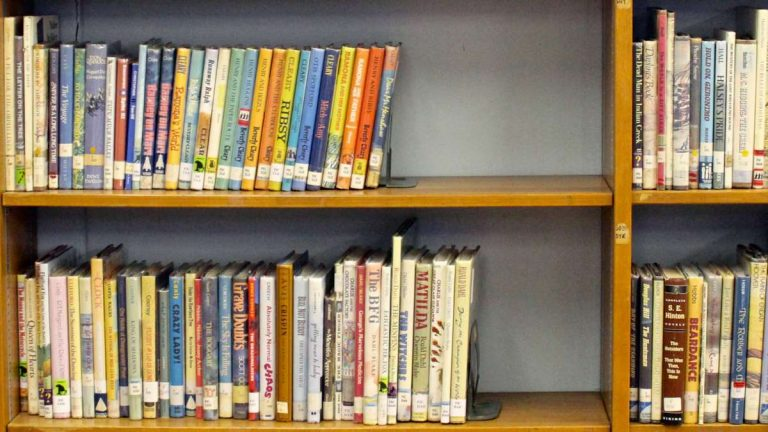 One grant from the Mt. Airy/Chestnut Hill Teacher's Fund will go toward buying classroom books at C.W. Henry. (Jana Shea/for NewsWorks, file)
