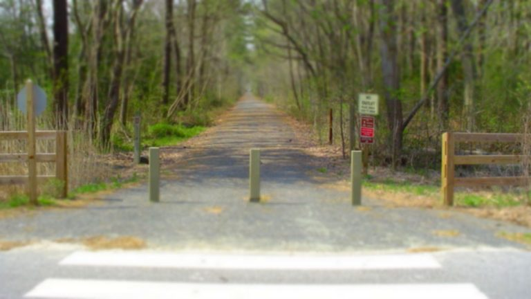 The Junction and Breakwater Trail seen from Wolfe Neck Rd. (DelDOT photo)