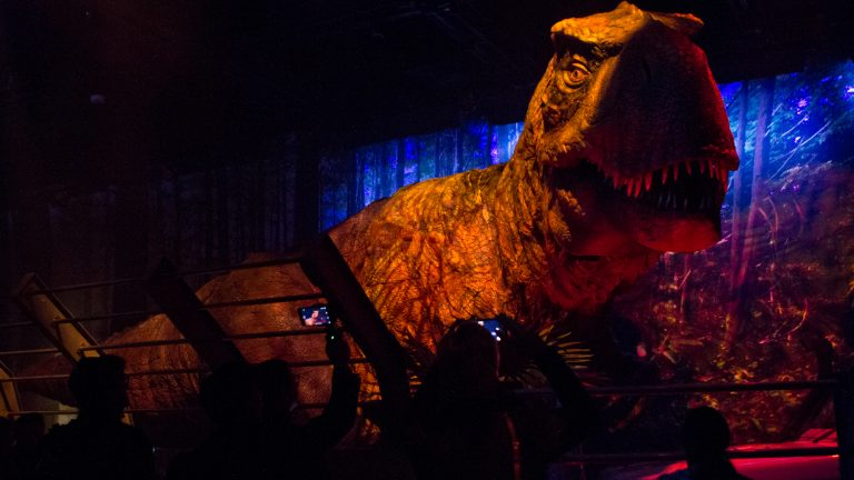 The Tyrannosaurus Rex emerges at the Jurassic World exhibit at the Franklin Institute. (Kimberly Paynter/WHYY)