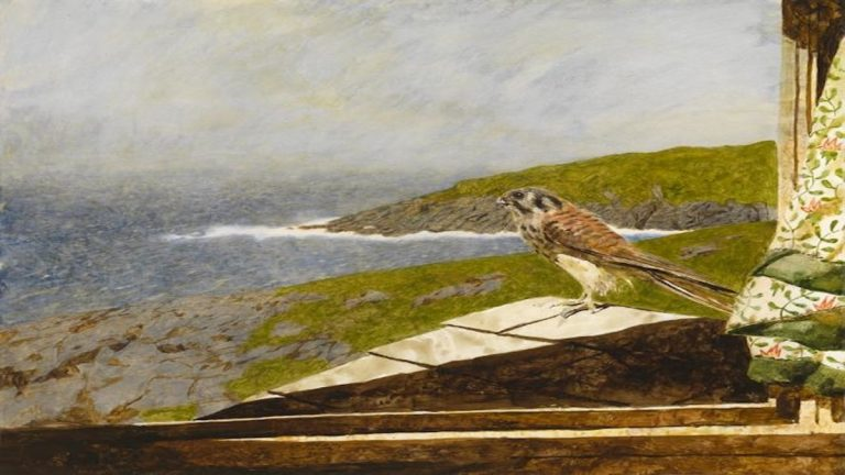 Kestrel, a 1985 painting by Jamie Wyeth, is on display at the Somerville Manning Gallery.