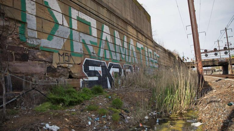 German artist Katharina Grosse sprayed huge swathes of color, and the Pennsylvania Horticultural Society will plant fields of wildflowers, along the rail corridor between 30th Street Station and North Philadelphia Station to draw attention to the need to redevelop the abandoned post-industrial area. (Lindsay Lazarski/WHYY, file)