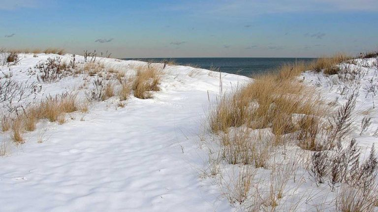 Snowy Sandy Hook dunes in Dec. 2009. (Photo: Miguel Vieira via Flickr)