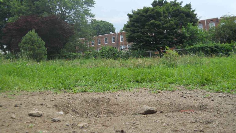 This lot on Mitchell Street in Roxborough has been vacant for nearly 30 years. (Kayla Cook and Sean Smith of Philadelphia Neighborhoods/for NewsWorks, file)