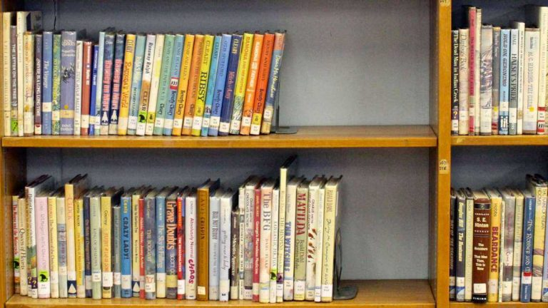A grant from the Mt. Airy/Chestnut Hill Teacher's Fund last year went toward purchasing new books at C.W. Henry. (Jana Shea/for NewsWorks