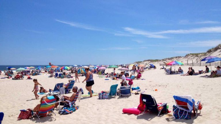Ocean Bathing Area 1 in Island Beach State Park in July 2014. (Photo: Justin Auciello/JSHN)