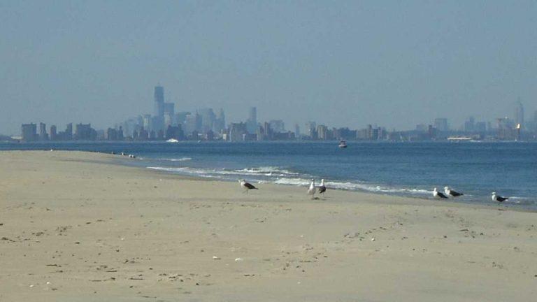 Sandy Hook. (Image: wikipedia.org)