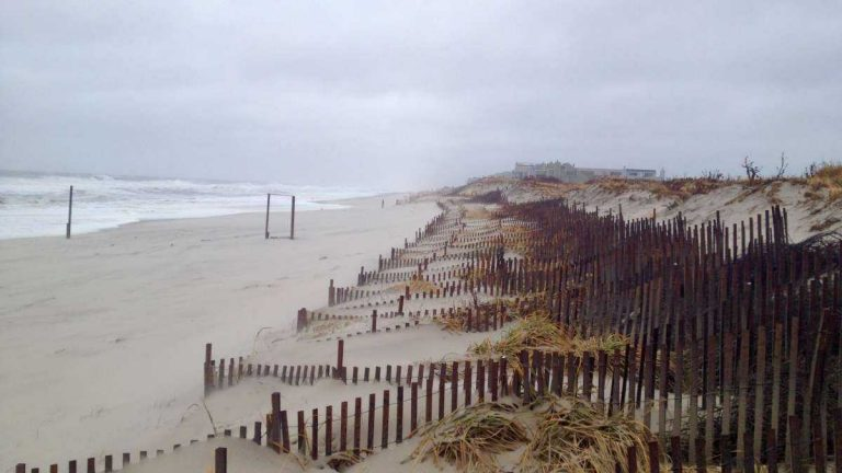 The Midway Beach dune system on Dec. 9, 2014. (Photo courtesy of Dominick Solazzo)
