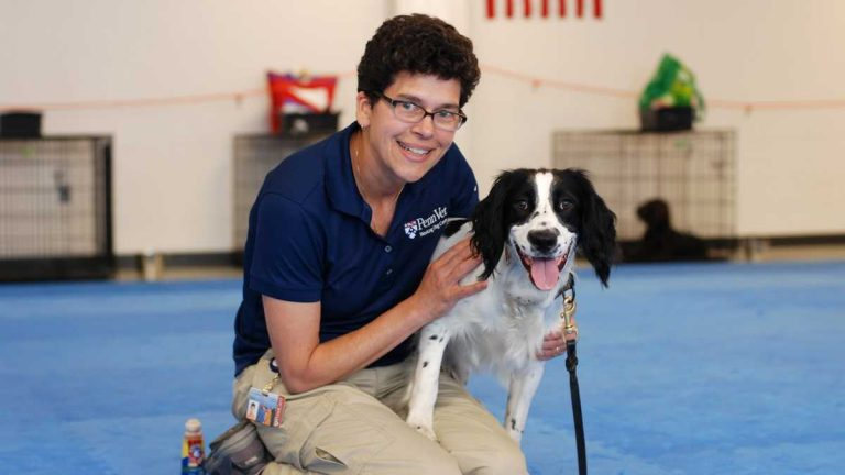 Dr. Cindy Otto, director of the Penn Vet Working Dog Center, helps train dogs, like McBaine, for life-saving careers. (Photo courtesy of John Donges/Penn Vet)