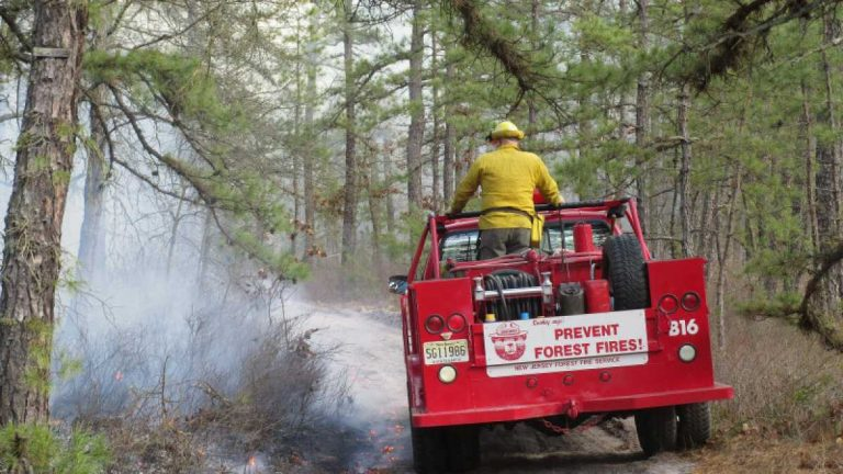 A prescribed burn in Wharton State Forest, Burlington County on March 3, 2013. (Image: NJ Forest Fire Service, Section B10)