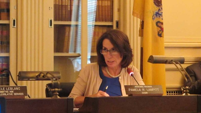 Assemblywoman Pamela Lampitt says licensing of human milk banks would protect babies' health. (Phil Gregory/WHYY)