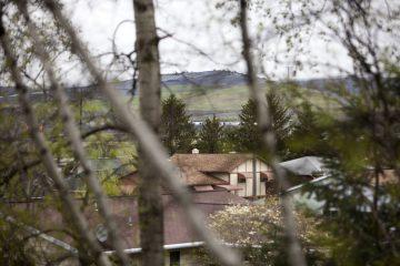 Between homes in a suburb of Scranton