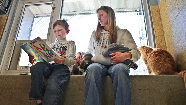Shannon Gregor and her son Bryson read to cats at the Animal Rescue League of Berks County. (Kimberly Paynter/WHYY)