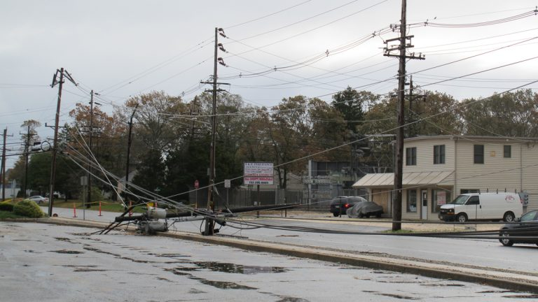 Power lines toppled by Superstorm Sandy. (Phil Gregory/WHYY)