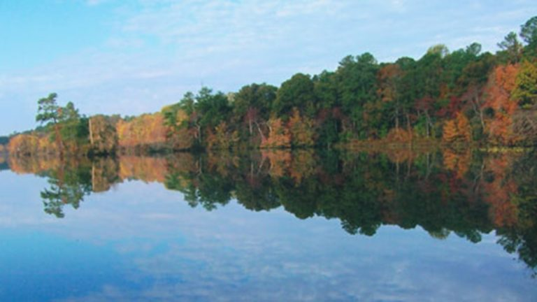 Like all Delaware state parks, Lums Pond State Park will be open with free admission this Black Friday. (photo courtesy DE State Parks)