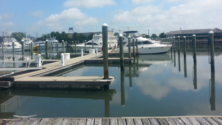 Changes under consideration by the New Jersey Department of Environmental Protection would allow building marinas in coastal areas and expanding existing facilities to include restaurants. (WHYY file photo)