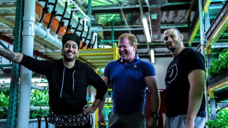 John Paul Ramos, Jack Griffin, and Lee Weingrad operate a booming South Philly hydroponic vertical farm. (Jason Sherman/Technical.ly Philly)