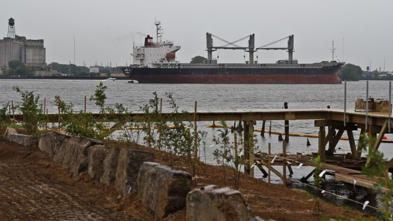 The Nikol H is a cargo ship that's been anchored in the Delaware for months. (Kimberly Paynter/WHYY)