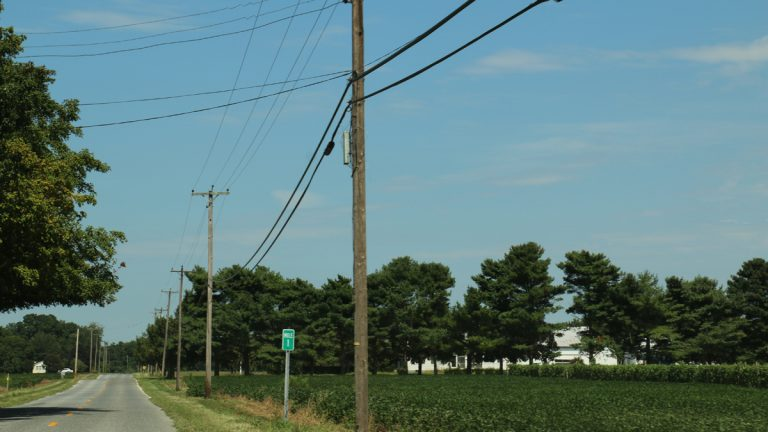 Telephone poles in Cumberland County, where residents have complained of issues with their phones. A recent decision from the Board of Public Utilities would deregulate rate increases for Verizon's landline telephone service. (Joe Hernandez/WHYY)