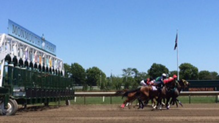 Horses leaving the starting gate at Monmouth Park (Phil Gregory/WHYY)
