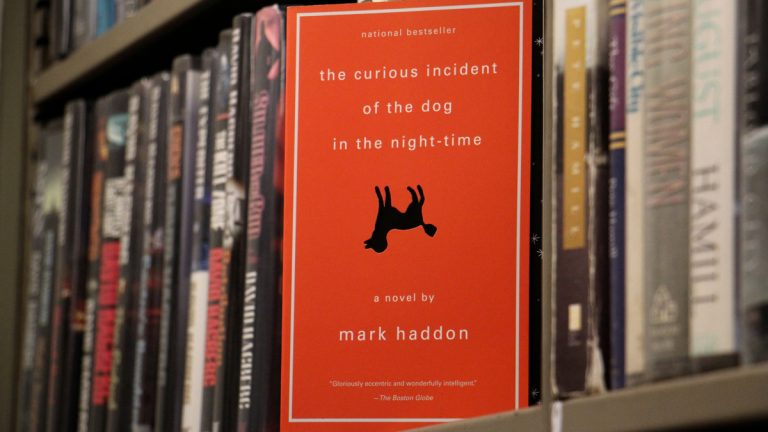"autism the curious incident of the Curious incident of the dog in the night time by mark haddon essay 855 words | 4 pages the curious incident of the dog in the night time is about a young boy with asperger's syndrome named christopher asperger syndrome is an autism spectrum disorder considered to be on the ""high functioning"" end of the spectrum."