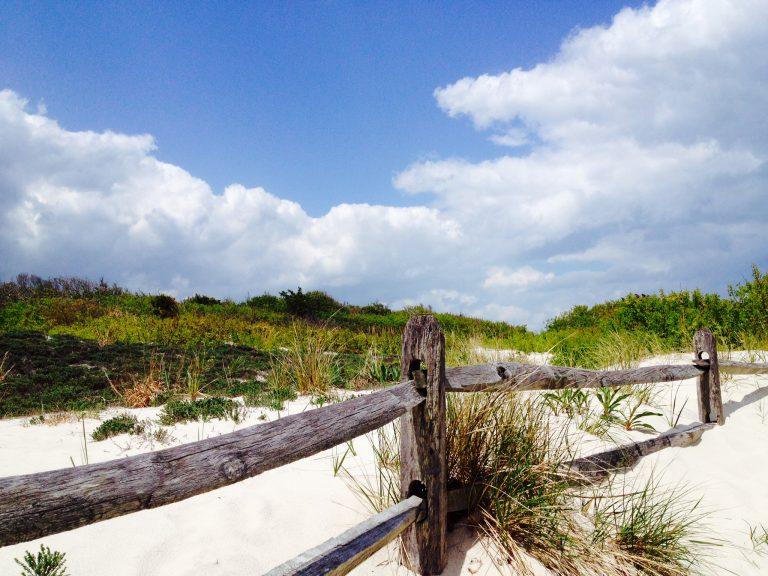 Island Beach State Park. (Photo: Justin Auciello/for NewsWorks)