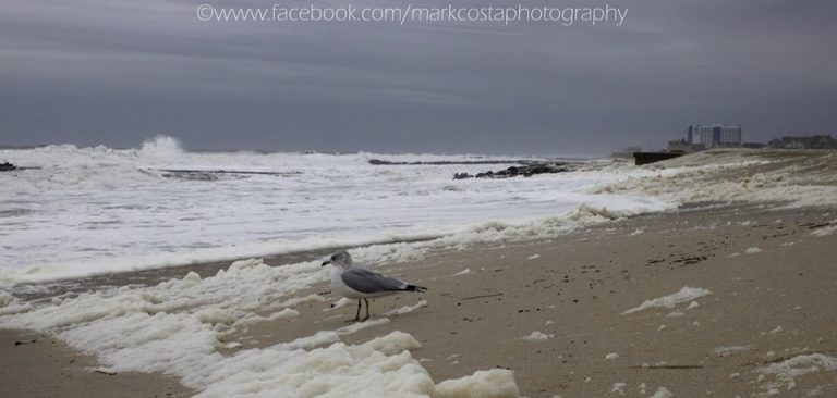 Beach erosion during Friday afternoon's high tide at Seven Presidents Oceanfront Park in Long Branch. (Photo: Mark A. Costa/Mark Costa Photography via Jersey Shore Hurricane News)