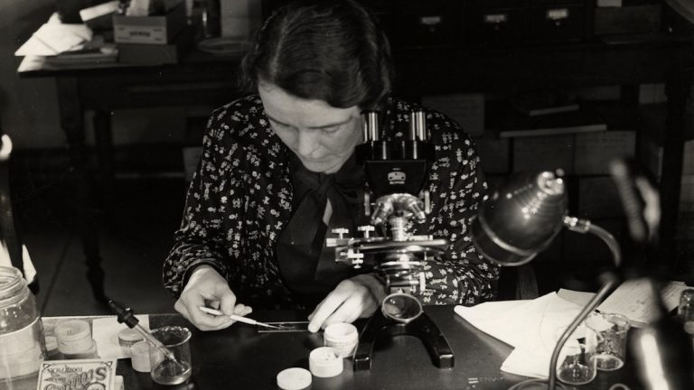 Dr. Ruth Patrick examines diatom slides at the Academy of Natural Sciences in the 1940s. (Courtesy of the Academy of Natural Sciences Archive)