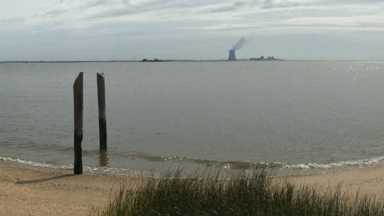 The Salem Hope Creek nuclear power plant in New Jersey seen from the Delaware side of the river. This is close to where a proposed underwater powerline would be buried in the river. (Mark Eichmann/WHYY)