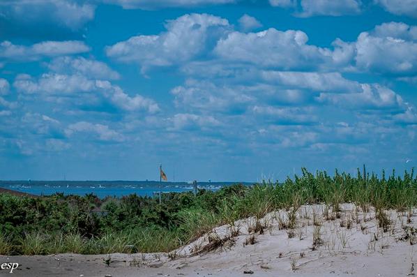 A sweeping Island Beach State Park vista. (Photo: Eveline Schwanitz Principe via The Friends of Island Beach State Park)