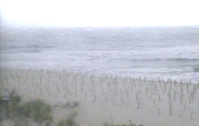 Newly planted dune grass under cloudy skies in Beach Haven Wednesday morning. (Image: TheSurfersView.com)