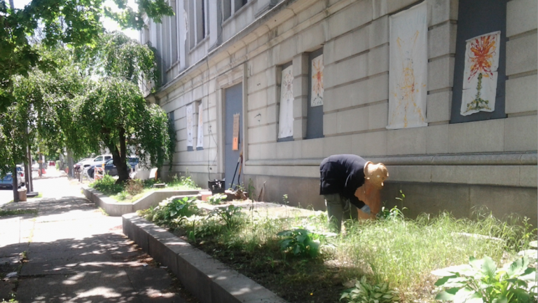 Allison Weiss of Germantown Artists Roundtable continues a group mission to keep the garden outside Town Hall growing. (Alaina Mabaso/for NewsWorks)