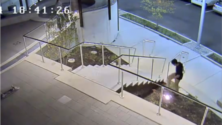 Footage of an alleged vandal causing upwards of $30,000 in damage at Manayunk's Venice Island. (Image courtesy of Philadelphia Police)