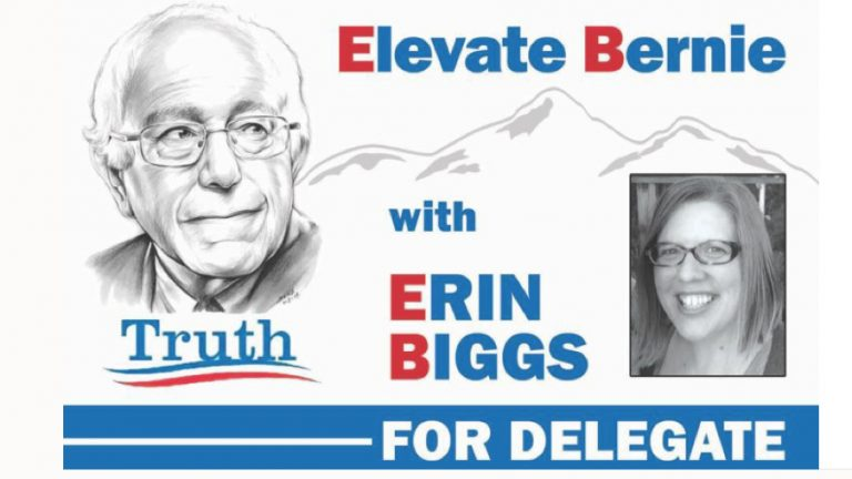 Colorado delegate Erin Biggs has raised about $2