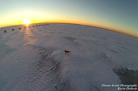 A foxy, frozen sunset. (Image courtesy of Kevin Doherty/Ocean Aerial Photography)