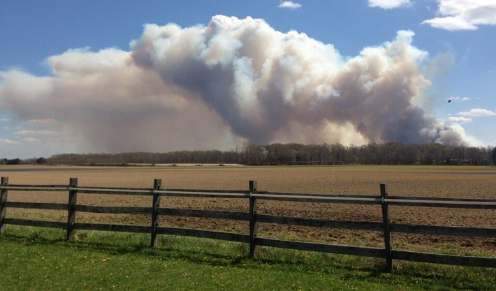 The smoke plume from the forest fire in Waterford Sunday afternoon. (Photo courtesy of @taeganlong via Twitter)