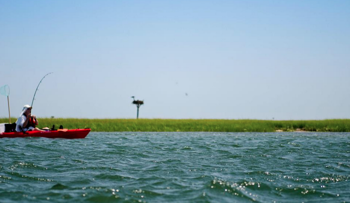 A fisherman enjoying a sunny day at Island Beach State Park in August 2010. (Photo: Jennifer Marie Antoinette)