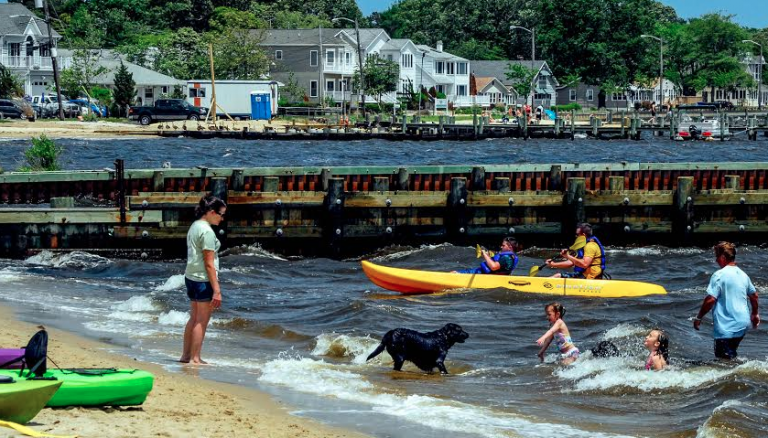 A scene from the 2013 Barnegat Bay Festival. (Image courtesy of The Riverside Signal)