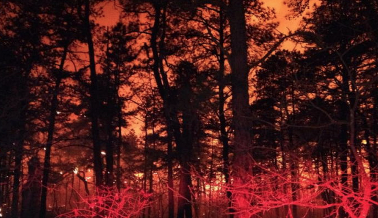 New Jersey Forest Fire Service photo of 2014 wildfire.
